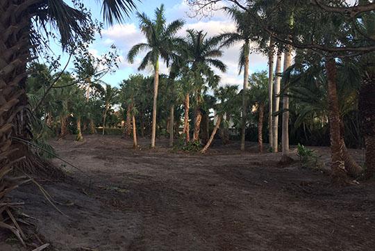 Paraiso Estates - Boca Raton